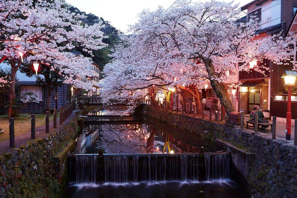 Обои для рабочего стола Цветущая весной сакура, свесившая свои ветки над узким каналом, проходящем вдоль старой улочки вечерней порой, Tokyo / Токио, Japan / Япония