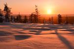 Обои Зимний солнечный день в Финляндии. Фотограф Максим Евдокимов (phototourtravel. ru)