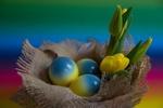 Обои Пасхальные яйца и желтые тюльпаны на холщевой салфетке, by Ingrid