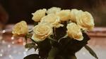 Обои Букет роз на фоне боке