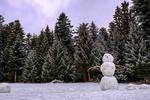 Обои Снеговик на снегу на фоне леса, by Bruno