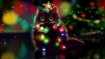 Обои Черный кот со звездой на голове украшен горящей гирляндой, by 1NFIN1TY