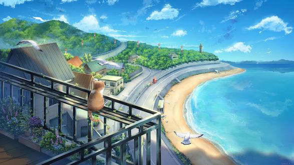 Кошка, сидящая на перилах балкона, любуется морским пейзажем