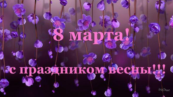 Конкурсная работа Весенние цветущие веточки, (8 марта, с праздником весны!)