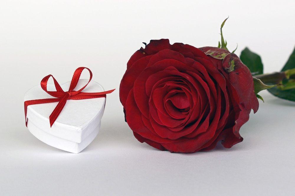 Обои для рабочего стола Красная роза и подарочная коробка в виде сердечка, by annca