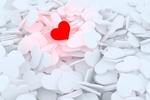 Обои Белые и красное сердечки
