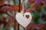Обои Деревянное сердечко на шнурке весит на дереве