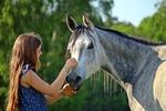 Обои Девушка с длинными волосами гладит лошадь, by rihaij