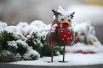 Обои Игрушечная сова с сердечком стоит на снегу, by JГјrgen Ultee