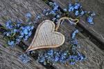 Обои Незабудки и сердечко на дощатой поверхности, by Julita