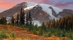 Обои Горы, сосны и вообще красивая природа