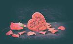 Обои Розовая роза и сердечко из роз, by Jennifer Williams