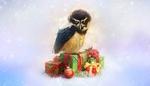 Обои Сова сидит на подарках, by Elena Roslyakova