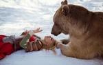 Обои Девушка лежит на снегу рядом с медведем, фотограф Дарья Лефлер
