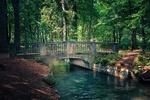 Обои Каменный мост через реку на фоне деревьев, by Albrecht Fietz
