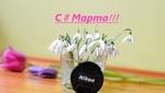 Обои Подснежники в вазе, крышка от фотоаппарата nikon и тюльпаны на столе, (с 8 марта! ), фотограф Julia Mosiychuk