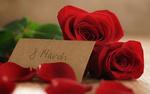 Обои Лепестки и красные розы, надпись 8 марта