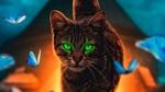 Обои Кошка с зелеными глазами стоит среди порхающих бабочек