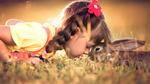 Обои Девочка с кроликом на траве, фотограф Сухарь Александр