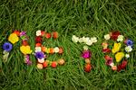 Обои На зеленой траве из цветов и ягод выложено слово лето, by Нина Попова