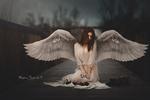 Обои Девушка с крыльями ангела сидит на дороге перед розой и печатной машинкой, by Vicente Serra