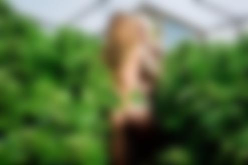 Обои Девушки с татуированными телами топлес обнимаются стоя в в теплице с кустами растений