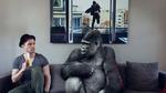 Обои Обезьяна выпрашивает банан у сидящего рядом мужчины, by David Olkarny
