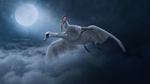 Обои Девушка на лебеде летит над облаками, by DoaaHammam