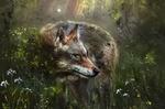 Обои Волк в траве с цветами, автор Eugene Voznesensky