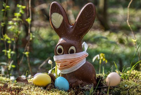 Конкурсная работа Шоколадный заяц в маске на траве рядом с крашенками, by Susanne Jutzeler