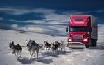 Обои Упряжка собак хаски тащит на санях грузовик