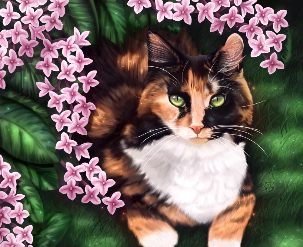 Обои цветы, Кошка. Кошки foto 2