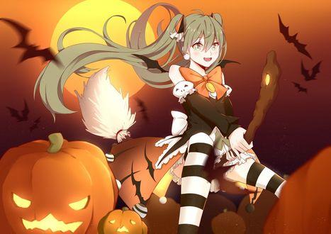 Конкурсная работа Vocaloid Hatsune Miku / вокалоид Хатсуне Мику на метле на фоне полной Луны среди тыкв и летучих мышей летит на Halloween