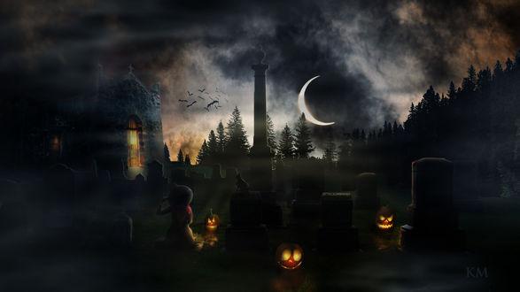 Конкурсная работа Ведьма с кошкой сидят на кладбище в конун Дня Всех Святых, by KISMUKI