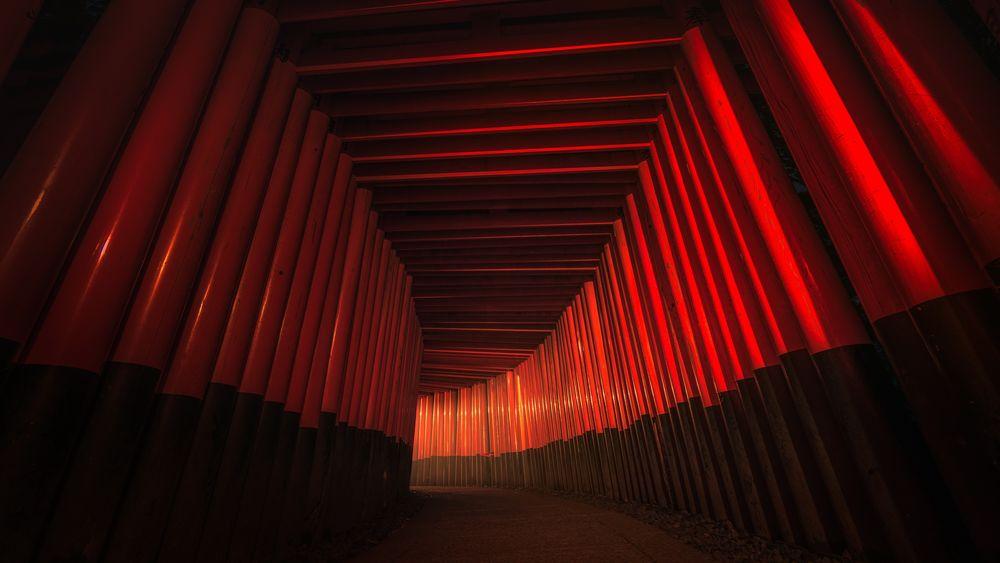 Обои для рабочего стола Fushimi Inari Shrine / ворота тории в Киото / Kyoto, Япония / Japan