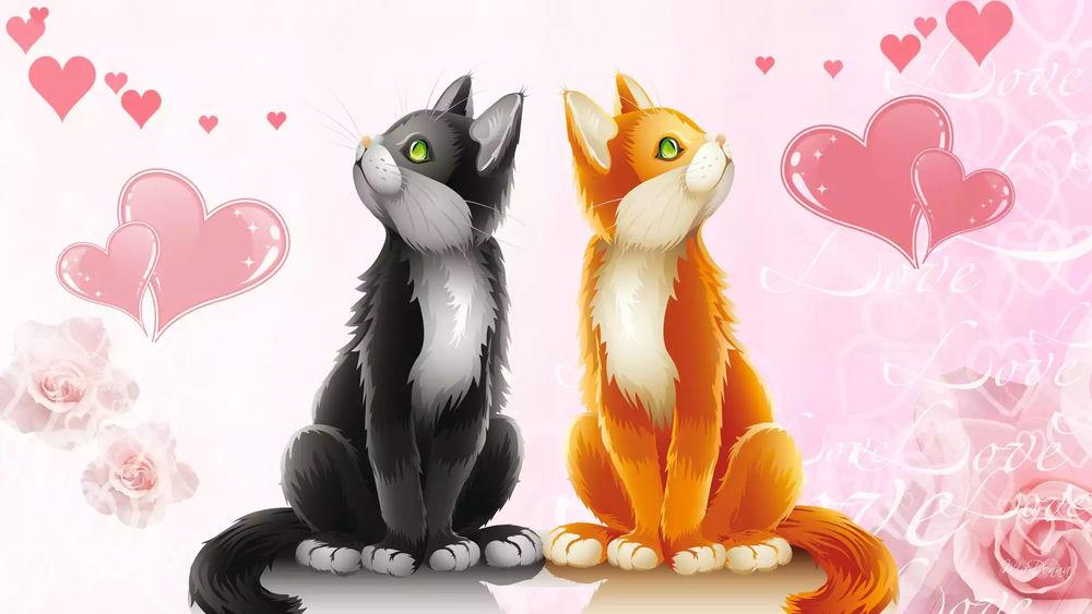 Обои для рабочего стола Бело-рыжая кошка и черно-белый кот среди роз и сердец