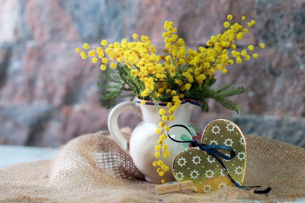 Обои для рабочего стола Мимоза в вазе и сердечко рядом, by Vesna Harni