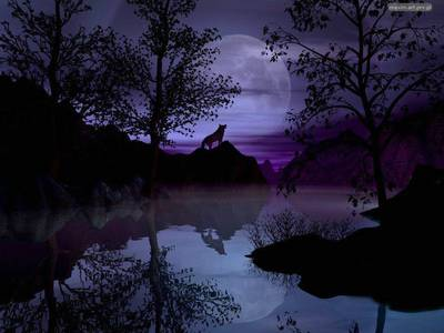 Фото Волки, просто волки. (© Anatol), добавлено: 22.04.2010 14:32