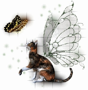 Фото мечта котов (© Anatol), добавлено: 24.05.2010 00:52