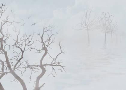 Фото деревья в тумане (© Флориссия), добавлено: 25.05.2010 15:16