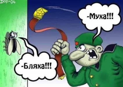 Фото )) (© Anatol), добавлено: 01.06.2010 01:44