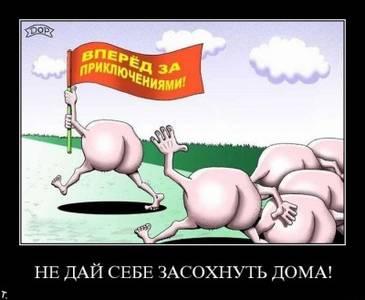 Фото Вперёд! (© Anatol), добавлено: 04.06.2010 02:02