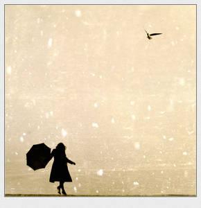 Фото Девушка... зонт.. птицы.. огромное небо... водянная гладь.. что ещё надо.. (© Anatol), добавлено: 13.06.2010 02:11