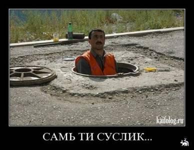 Фото Самь ти суслик... (Рабочий выглядывает из канализационного люка) (© ColniwKo), добавлено: 18.06.2010 02:03