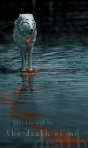 Фото волк-this life will be the death  of me (© Anatol), добавлено: 04.07.2010 01:17