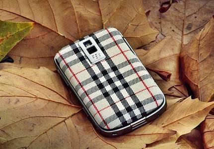 Фото BlackBerry между листьев (© Юки-тян), добавлено: 11.08.2010 19:45
