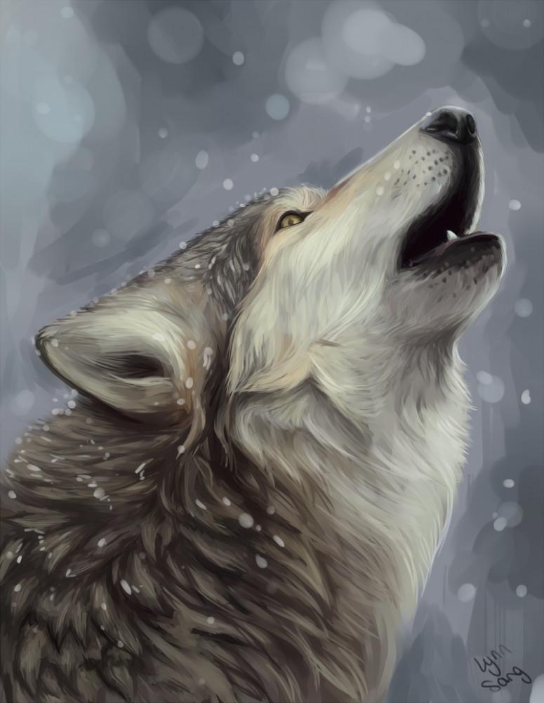 Фото Волк протяжно воет на луну