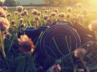 Фото Фотоаппарат в поле с цветами (© Юки-тян), добавлено: 02.09.2010 21:00