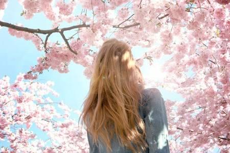 Фото Девушка под сакурой (© Юки-тян), добавлено: 10.10.2010 10:51