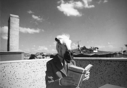 Фото парень с лошадиной головой (© Louise Leydner), добавлено: 20.10.2010 17:02